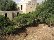 House of Character in Zejtun search picture